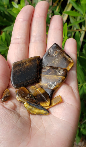 Tiger Eye Natural Gemstone by the Bag