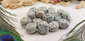Sesame Seed Kiwi Jasper Tumbled Polished Gemstone