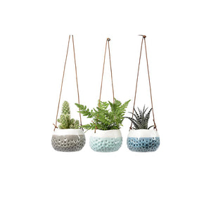 Indoor Hanging Pots - Baby Trio
