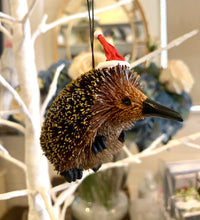 Bristlebrush Echidna Decoration