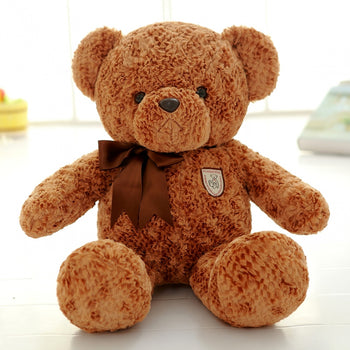 Dark Brown Teddy Bear School Season Gift