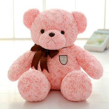 Pink Teddy Bear School Gift