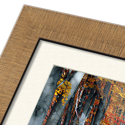 Premium Framed Prints 15% off this Autumn.