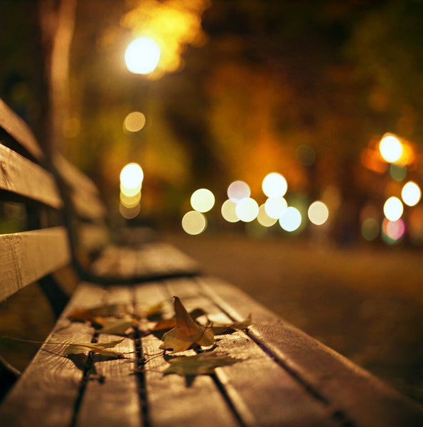Example Of Bokeh Photography - Leaves on a bench