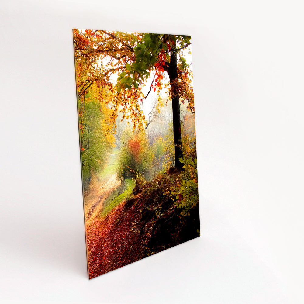 Portrait Format Gloss Acrylic with Gloss Prints