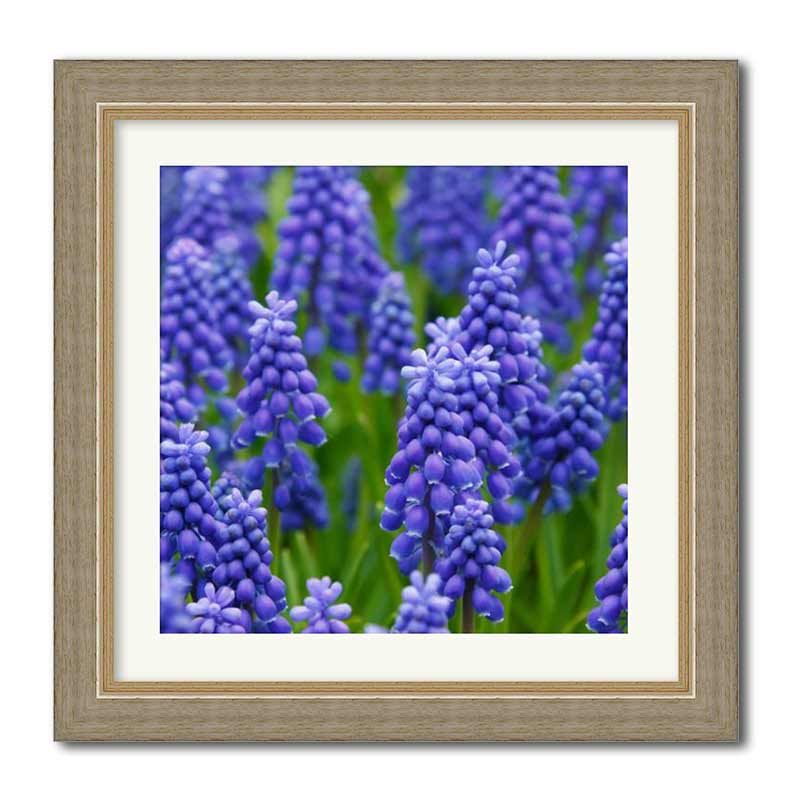 Square Layered Rustic Framed Print example