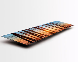 Panoramic format Aluminium Dibond - Photo Print of forest sunset scene