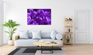 The Digital Room Gloss Acrylic with Ultra HD Metallic Print displayed on wall