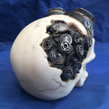 Steampunk Goggles Skull by Nemesis Now
