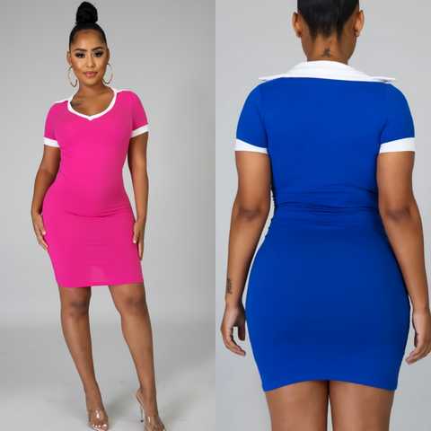 Basic V-Neck Collar Bodycon Dress(ship/pick up on or before 7/17)