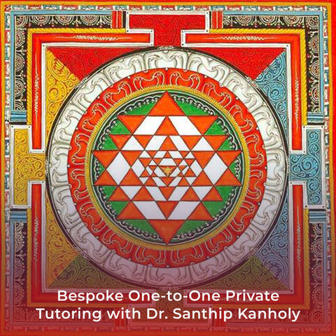 Bespoke One-to-One Private Tutoring with Dr. Santhip Kanholy