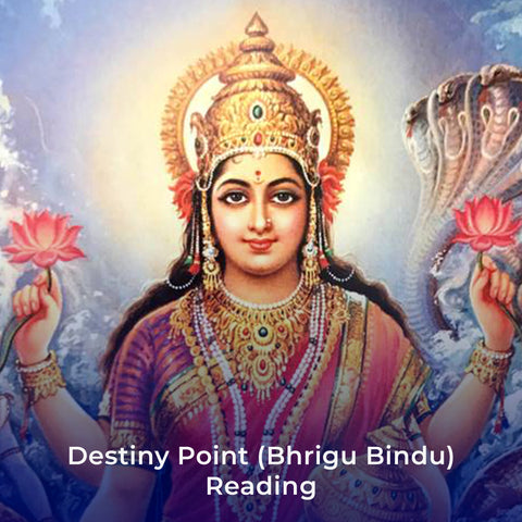 Destiny Point (Bhrigu Bindu) Reading