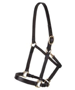 PREMIER LANCASTER LEATHER YEARLING/PONY HALTER - STYLE #HH 37511 YP