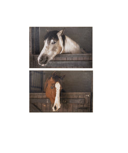 Ganz Painted Barn Horses Burlap Wall Art- Style #ER50230