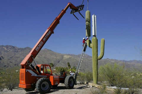 5G tower disguised as a Cactus