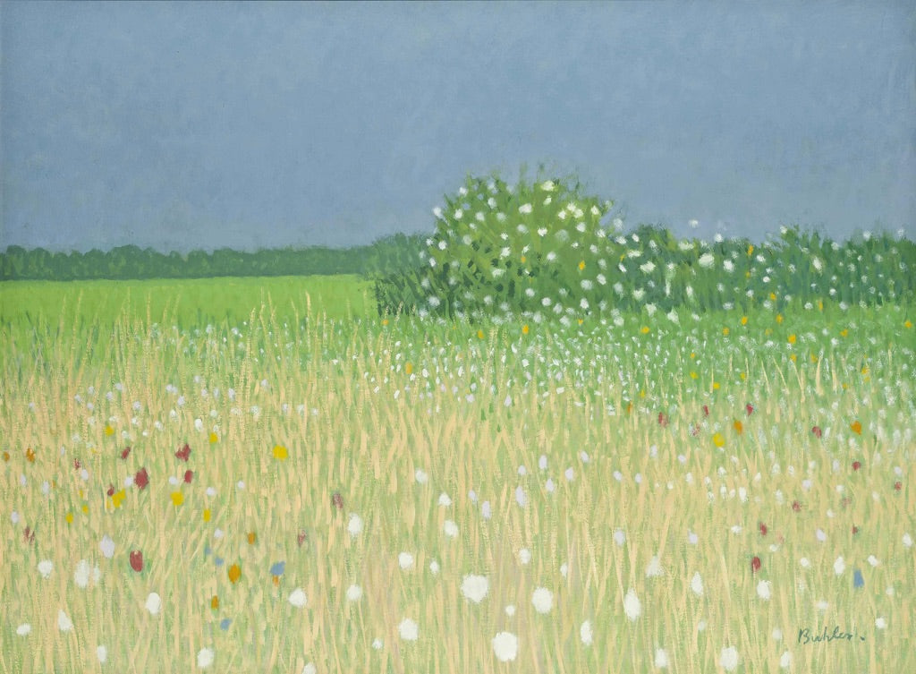 Robert Buhler - Wild Grass And Bushes