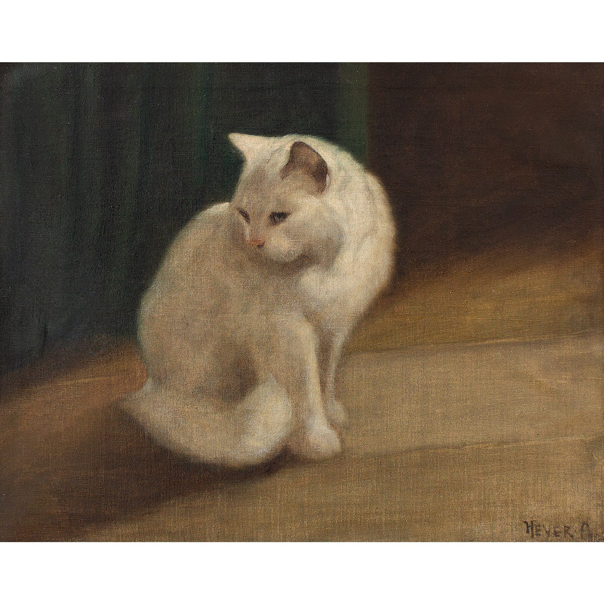 Arthur Heyer, Portrait Of A Persian Cat