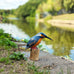 Wooden Kingfisher