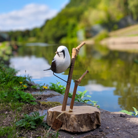 Wooden Bearded Tit