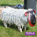 Small Metal Sheep