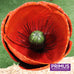 1m Giant Metal Poppy Garden Stake