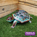 Ornate Solar Tortoise