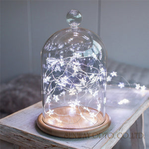 Star Shape LED Lights
