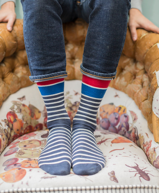 Marine Stripe Fine Sock - Blue 2