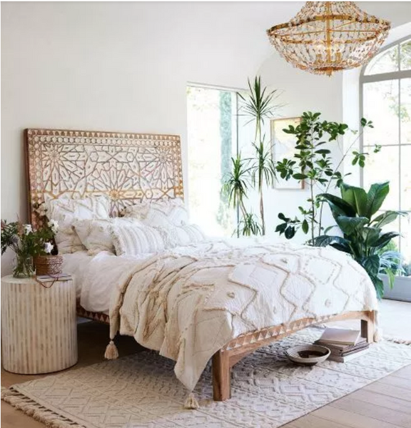 bedroom with multiple plants Photo credit: Homeology