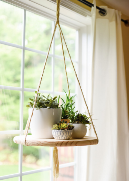 hanging planter Photo Credit: Place of my Taste