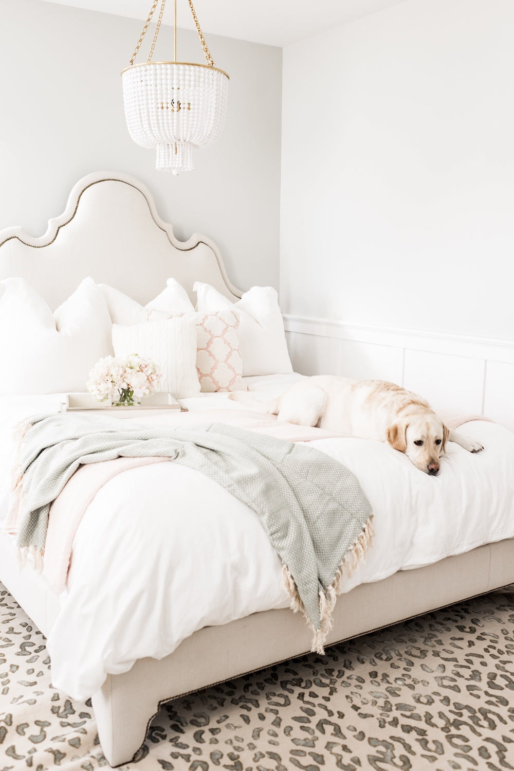Dog on Allswell Modern Glam Bed