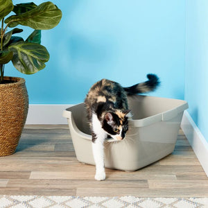 Open or Covered Cat Litter Box?