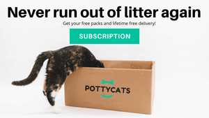 Pottycats monthly cat litter subscription with free online delivery across Malaysia