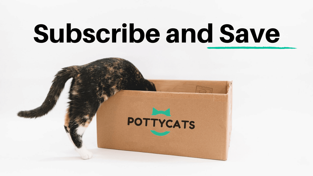 monthly cat litter delivery and subscription