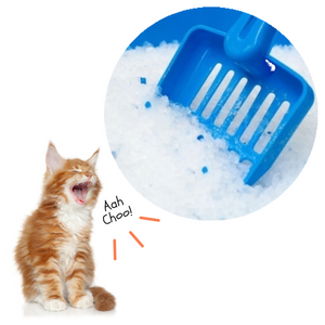 kitty litter, best cat litter, cat house, cat supplies, cat toilet, cat litter box, flushable, biodegradable, cheap cat litter, clay clumping, sensitive cats, litter sand, cat litter odor control, non tracking litter, non dusty, delivery within Malaysia