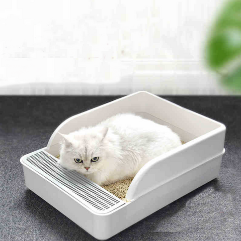 White Persian cat using the the litter box with tofu pellets