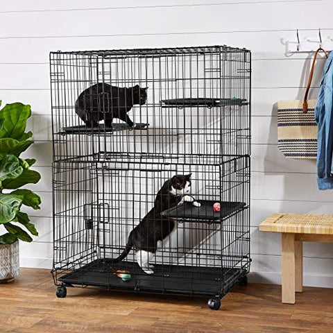 cats in cage