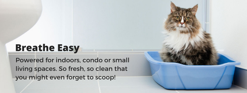 Pottycats litter perfect for indoor cats, condos or small living spaces