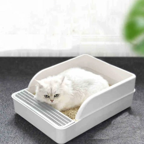 litter train your kitten with uncovered litter box