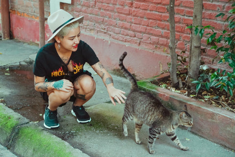 A girl luring to adopt a tabby cat from the street