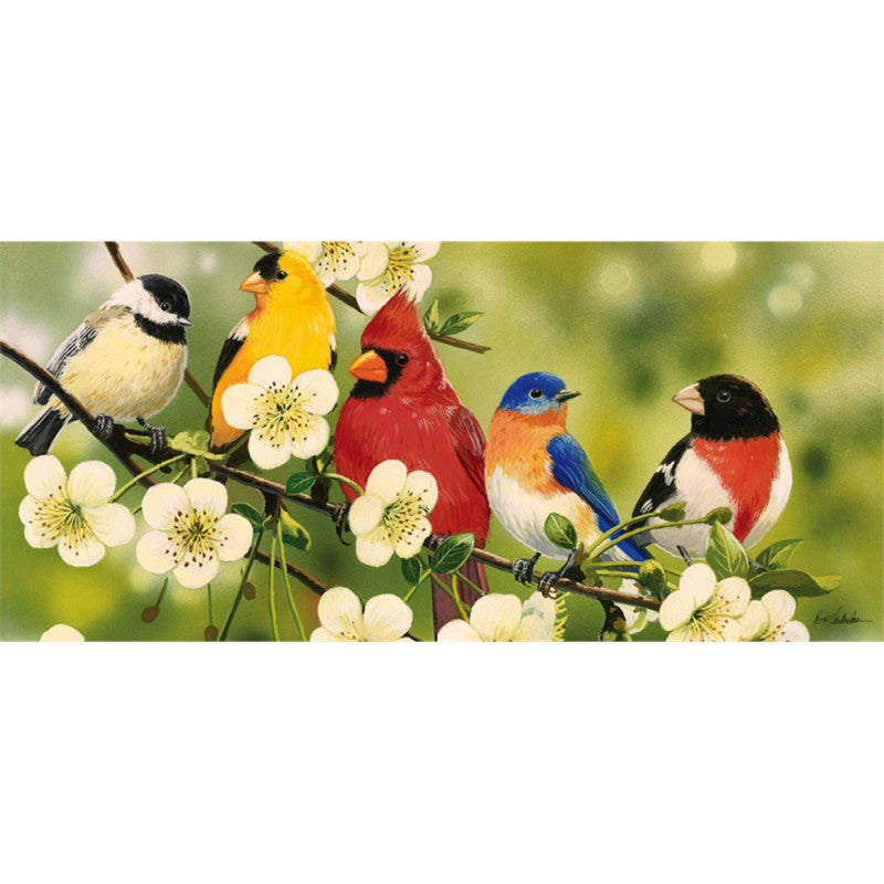 Sassafras Songbirds Switch Mat