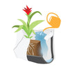 Wally Pro 1 Chocolate Wall Planter Pocket