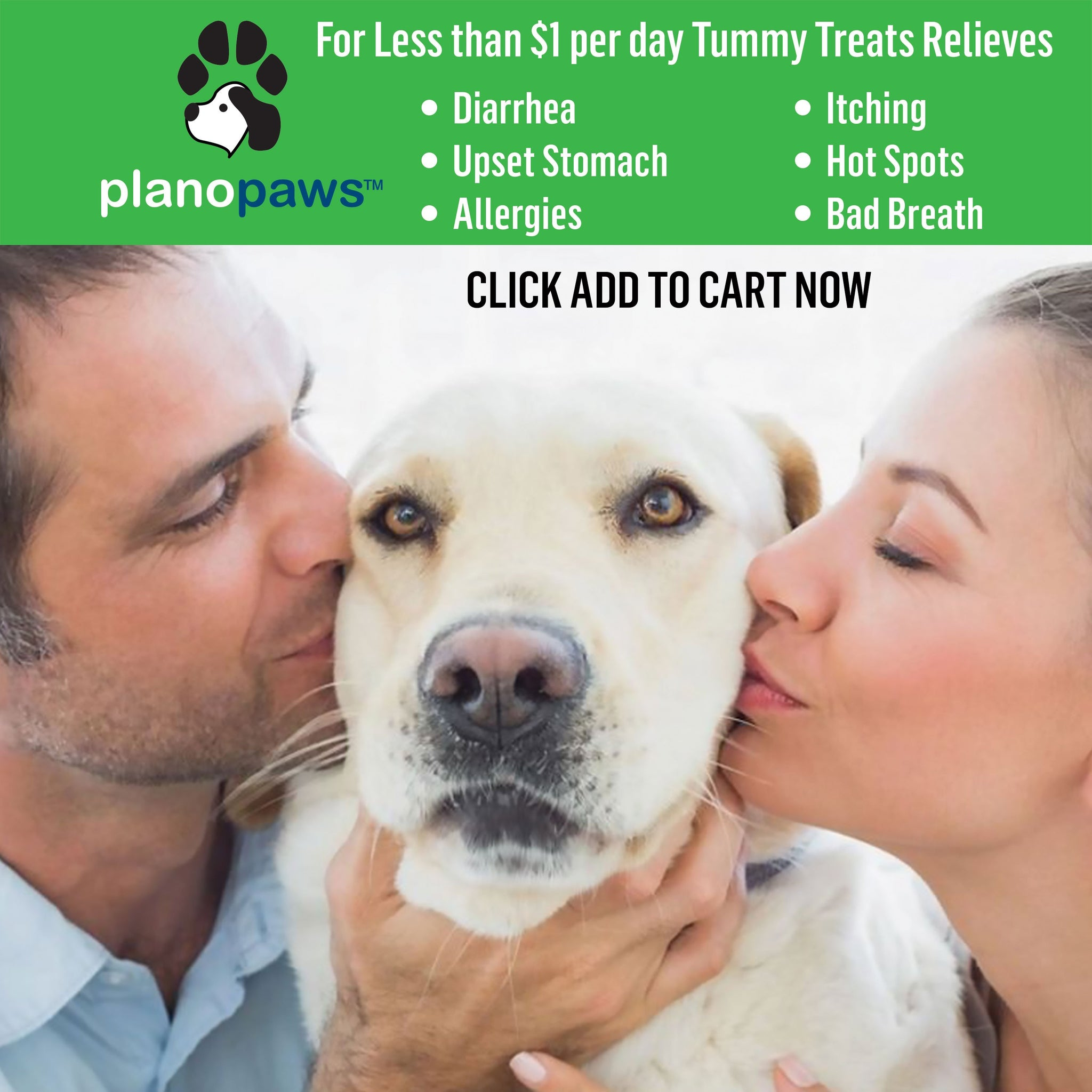 Tummy Treats, Probiotics for Dogs, Helps Diarrhea, Bad Breath, Gas | Dog Food Allergy Bad Breath