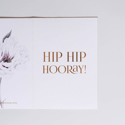 HIP HIP HOORAY  - Flower
