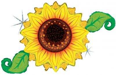Linky Sunflower