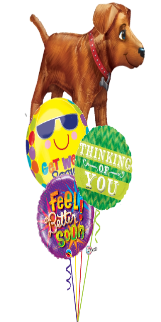 Golden Retriever Get Well Bouquet (4 Foils)