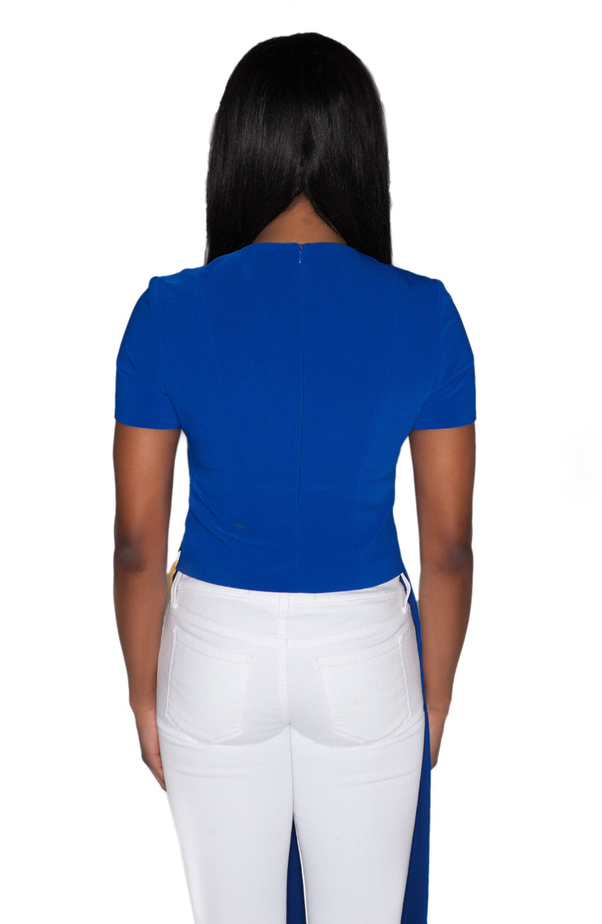 Short Sleeve Asymmetric Fitted Top
