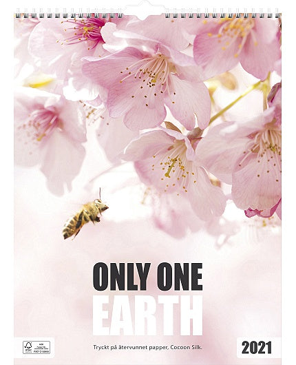 Only one earth - 1791
