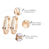 Paved  Cubic Zircon Stud Earrings - Arista Gems
