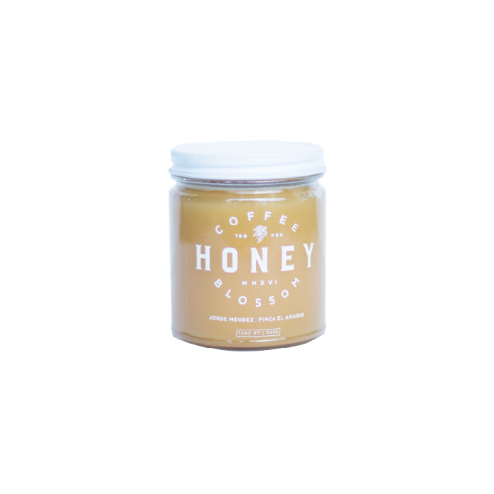 Coffee Blossom Honey 12oz - West bean